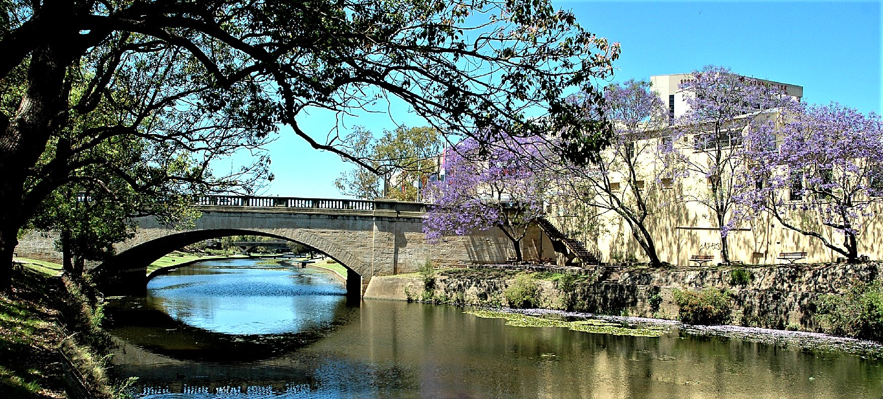 Welcome to our Parramatta History and Heritage website!