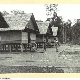 A Section of the Australian New Guinea Administrative Unit Headquarters