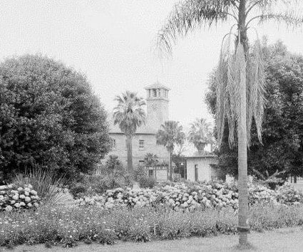 Front gardens along Greenup Drive. Source: National Library of Australia (vn4654261-v)